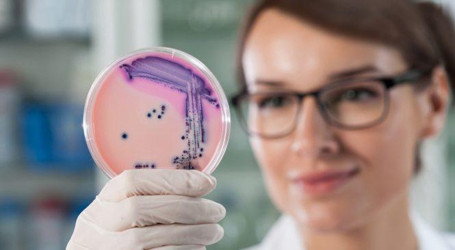 Революция в гастроэнтерологии. Helicobacter pylori