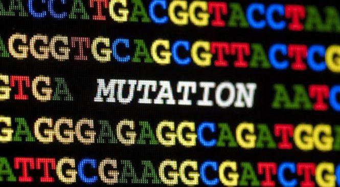 Мутации против канцеропревенции. Рак неизбежен?