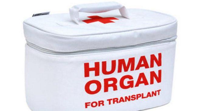 Трансплантация фекалий и колоноскопия