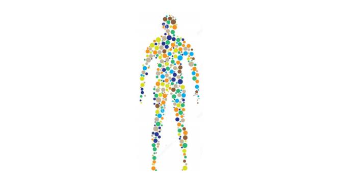 Малоизвестные факты о теле человека