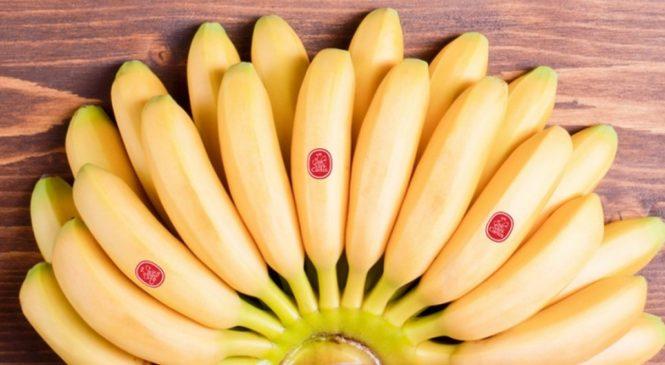 13 продуктов, которые борются с кислым рефлюксом